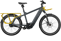 Riese + Müller Multicharger GT vario 625Wh E-Bike 2021 UTILITY GREY/ CURRY MATT